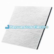 Filtro aspirador Electrolux